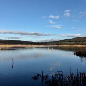 Morecambe Bay Wills & Estates, Lancaster, Morecambe, Heysham, Carnforth